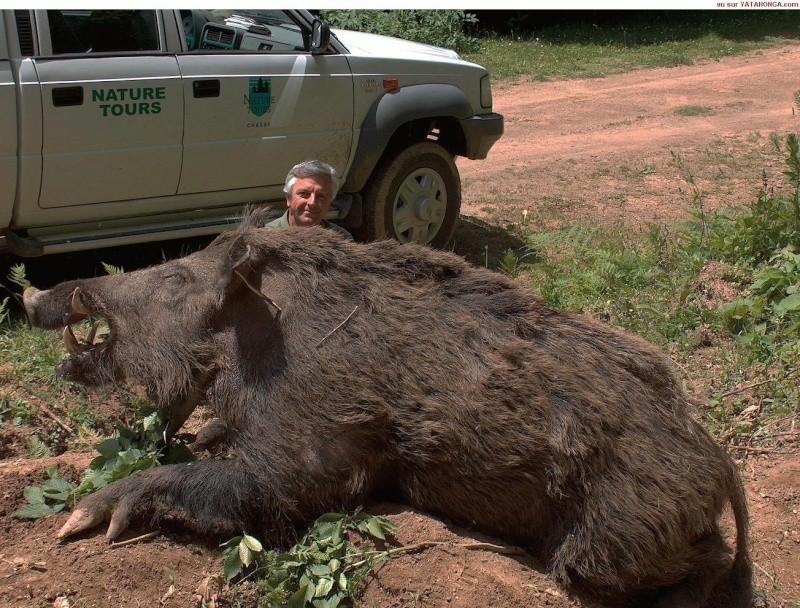 Un weekend maill de plusieurs accidents de chasse