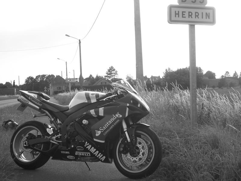 herrin10.jpg
