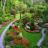 Uređivanje vrtova