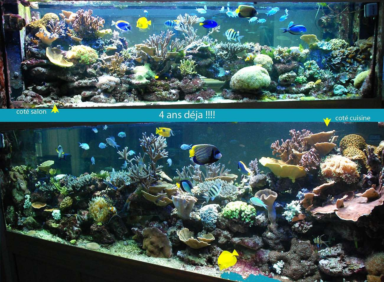 evolution d un bac marin il entame la 10eme 233 e