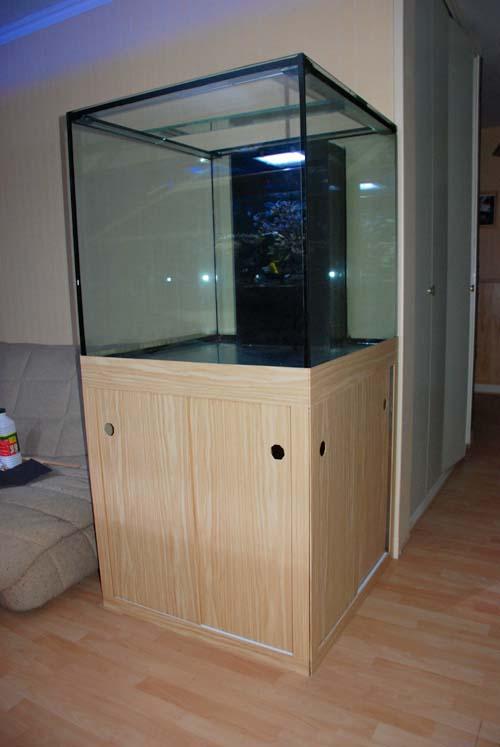 Fish only passage en recifal page 2 for Aquarium 50 litres occasion