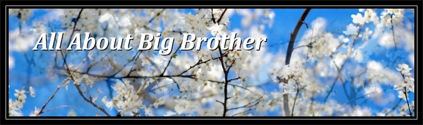 All About Big Brother ~~ AABB