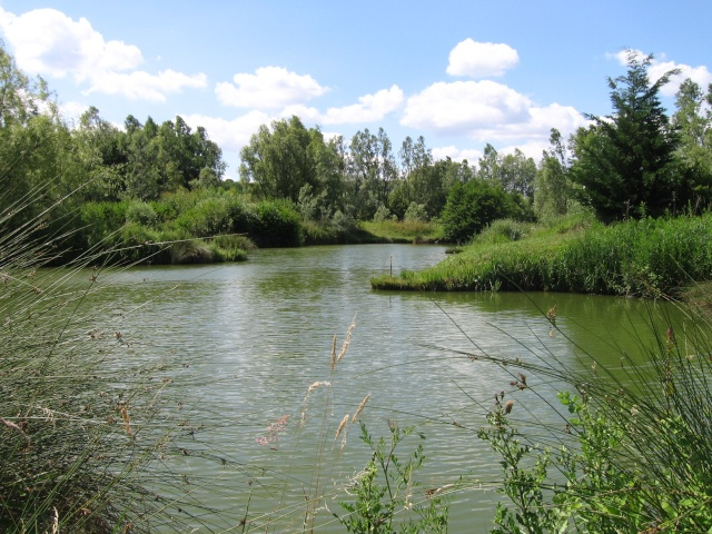 Ozielf fishing passer du bon temps au bord de l 39 eau pour for Bon tempe lake fishing