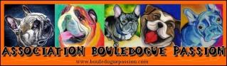 Association Bouledogue Passion