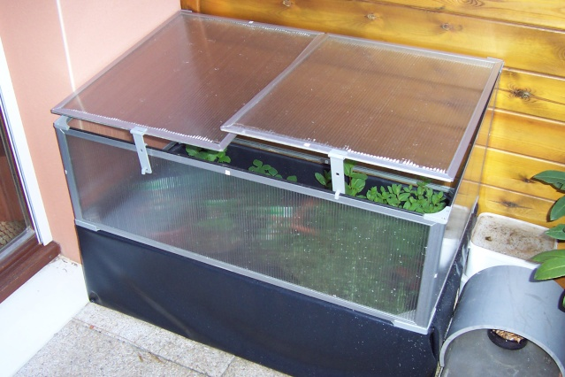 Petit bassin de terrasse ou balcon - Petit bassin de terrasse ...