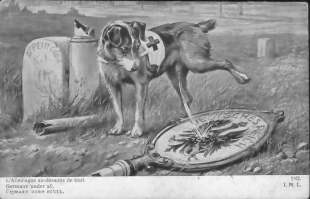chiens12