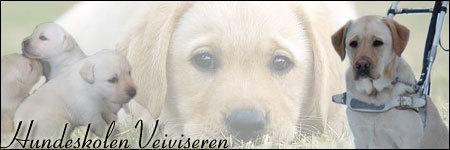 Hundeskolen Veiviseren