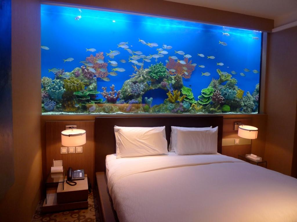 l 39 aquarium de ma chambre. Black Bedroom Furniture Sets. Home Design Ideas