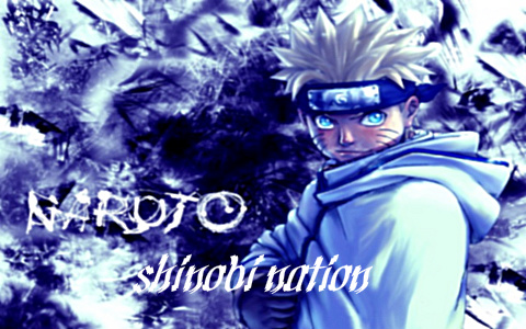 Shinobi Nation