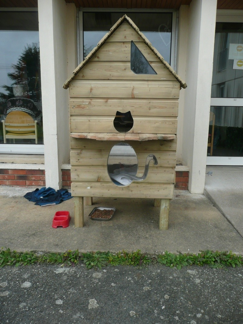 Grande niche en bois pour chat of niche exterieur chat for Niche exterieur chat