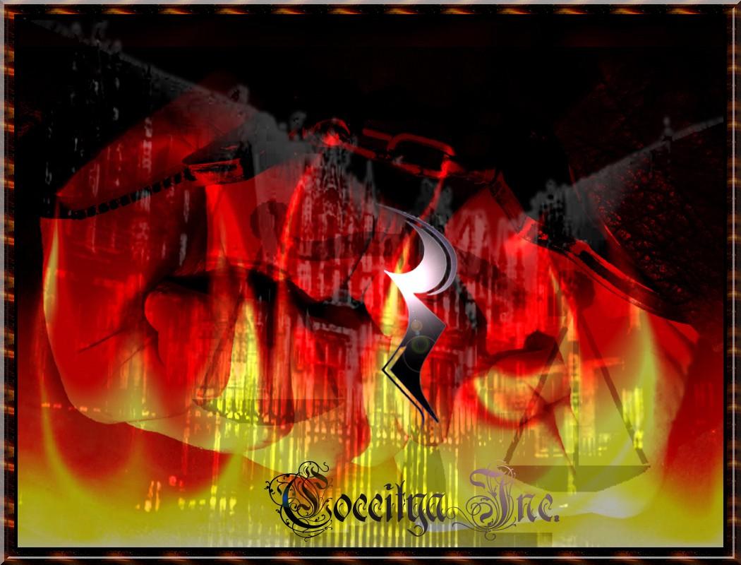 Coccitya Inc.