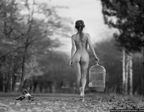 Фотосессии голые девушки